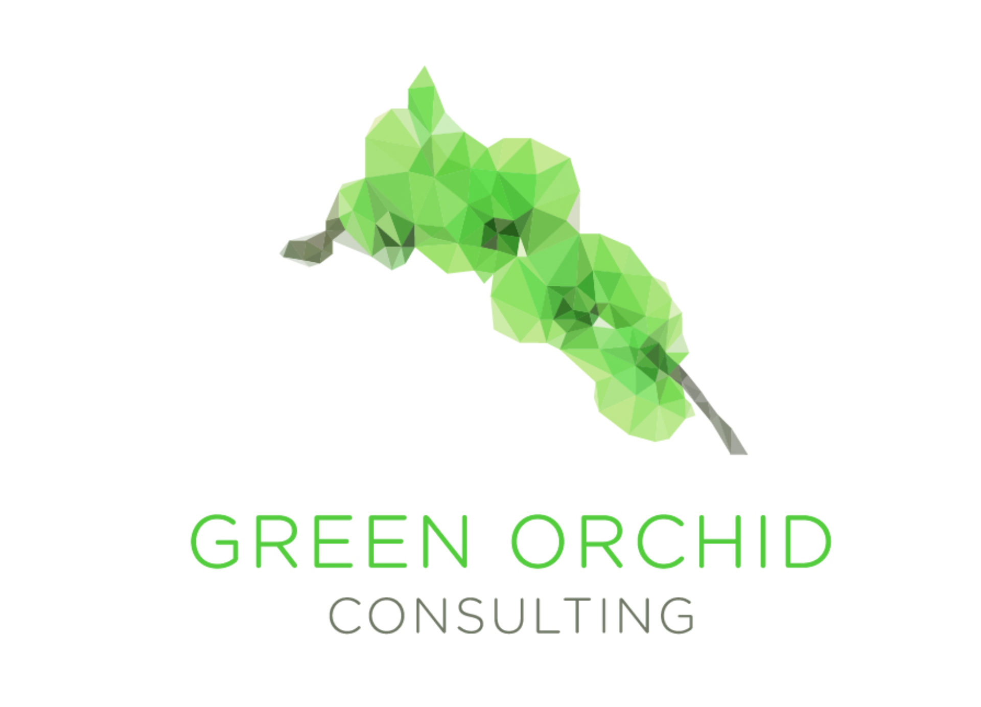 Green Orchid Consulting